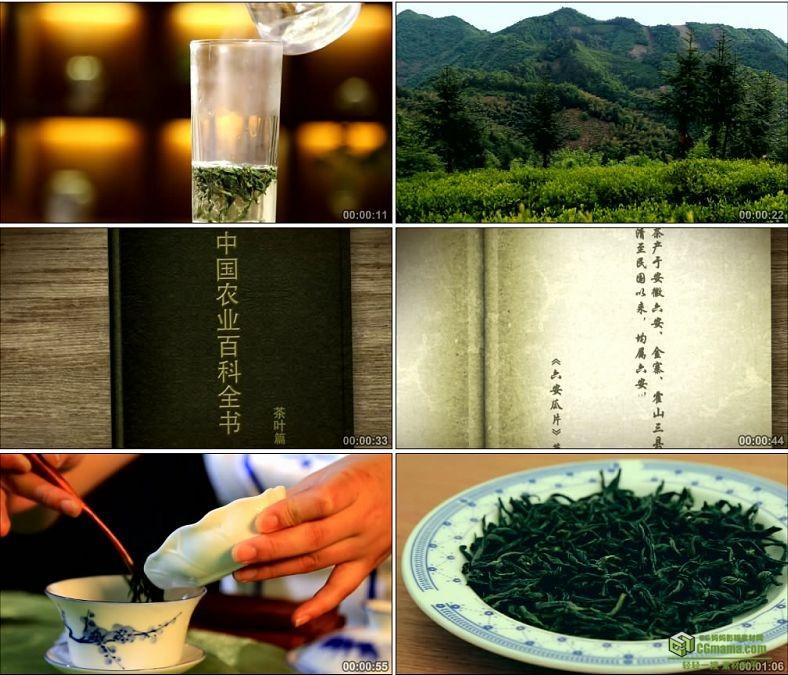 YC0053-六安瓜片茶叶特写泡茶/沏茶冲茶/茶艺/中国高清实拍视频素材下载