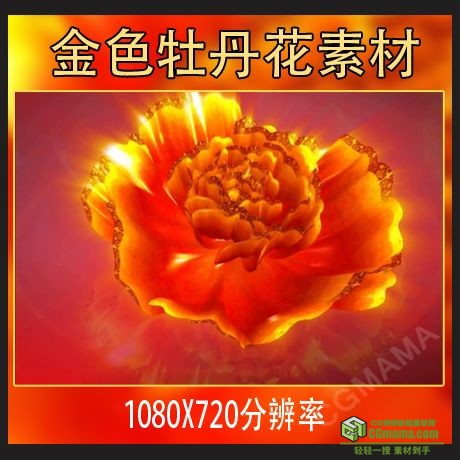 LED0005-金色牡丹花开/中国风民族古风舞蹈LED大屏幕视频动态背景素材