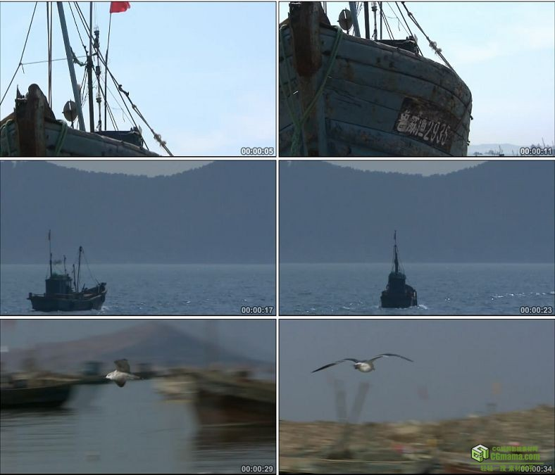 YC0285-山东威海刘公岛渔船海鸥海鸟/中国高清实拍视频素材下载