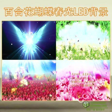 LED0047-歌舞晚会百合花蝴蝶春光鲜花花朵LED大屏视频背景素材下载