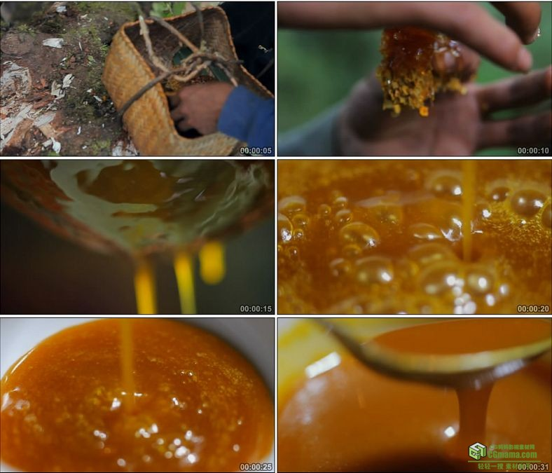 YC0893-新鲜野生蜂蜜的采制美食高清实拍视频素材