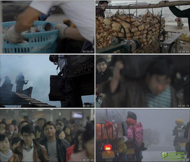 YC0898-渔民蜂农菜农外来务工人员人物高清实拍视频素材