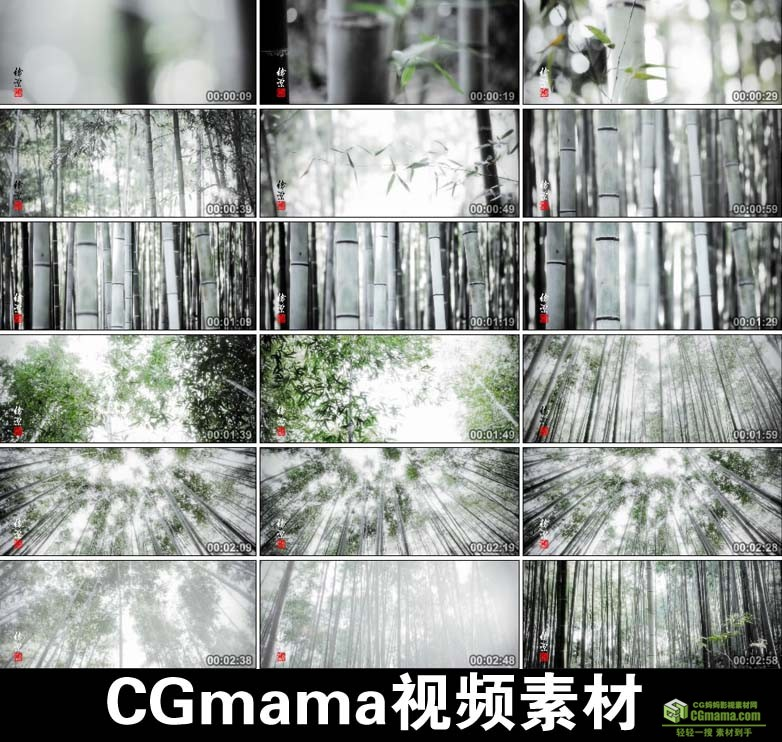 AA0053-竹中国水墨风格竹子竹林中国高清实拍视频素材宣传片