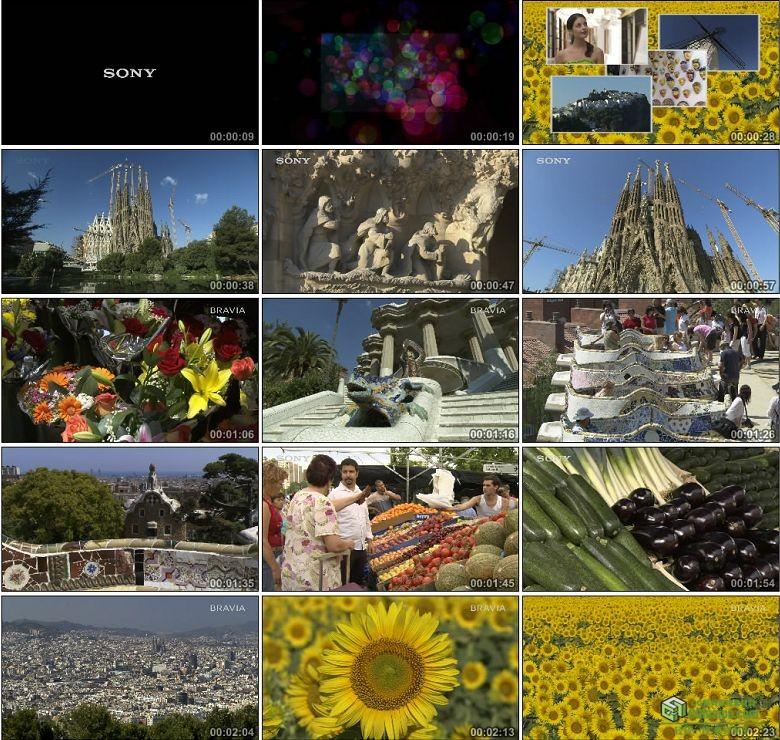 AA0257-索尼Bravia演示西班牙1080p高清实拍视频素材