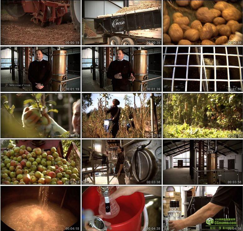 AA0426-大通酒厂水果酒酿造高清实拍视频素材宣传片