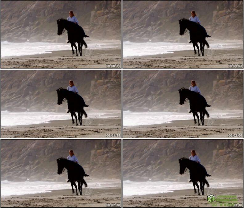 YC1134-美女骑马/骏马群奔驰高清实拍视频素材