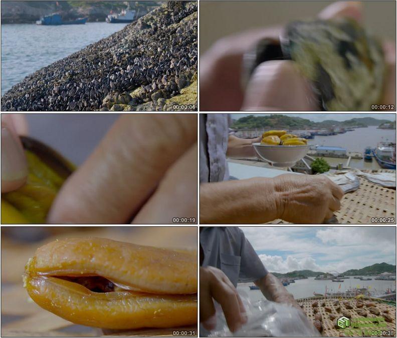 YC1161-海产品贝壳海蛎子采集煮制和晾晒高清实拍视频素材