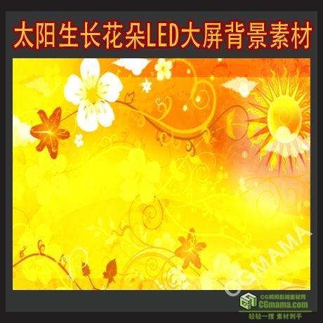 LED0179-太阳生长花朵花纹高清视频led背景素材