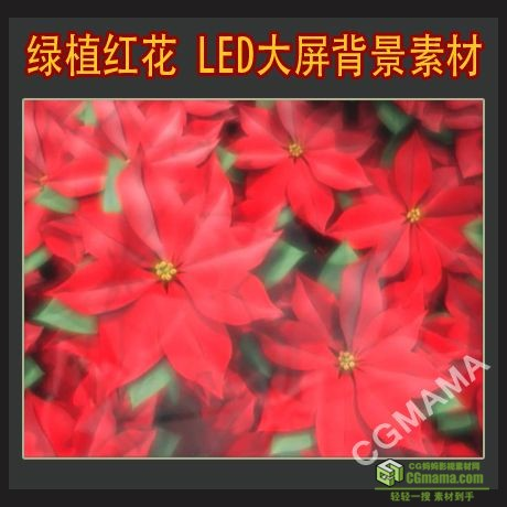 led0191-植物鲜花素材led视频屏幕背景素材