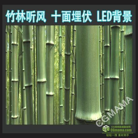 LED0203-竹林听风MOV带背景音乐视频背景素材竹子高清视频led背景素材