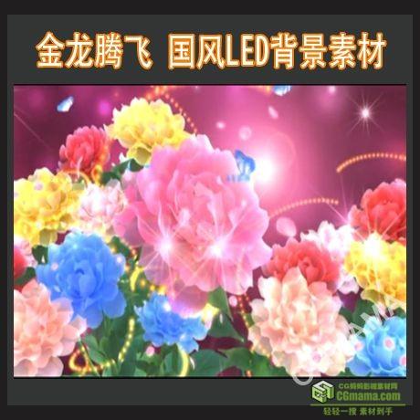 LED0212-牡丹花开蝴蝶飞舞花瓣飞舞led视频背景素材