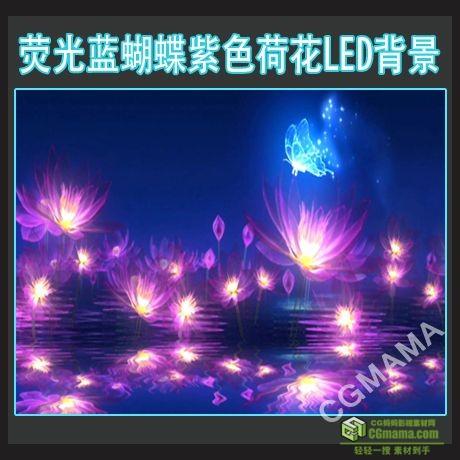 LED0213-荧光蝴蝶荷花粒子led高清视频背景素材