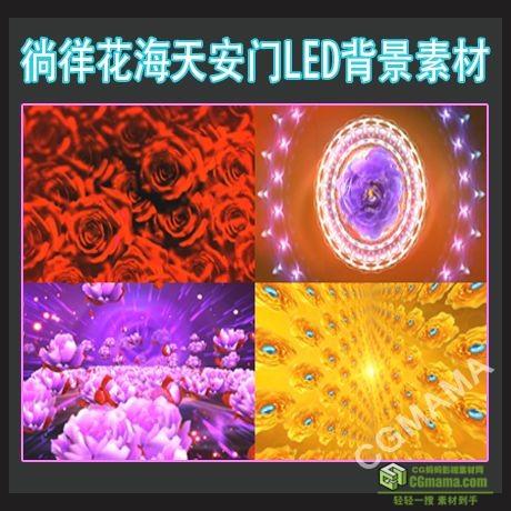 LED0214-徜徉花海天安门鲜花盛开高清led视频背景素材