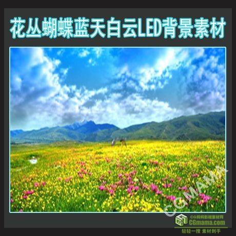LED0215-花丛蝴蝶蓝天白云led高清视频背景素材