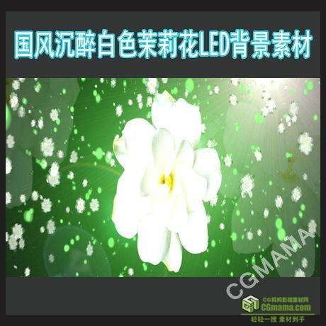LED0217-沉醉茉莉花led高清背景视频素材