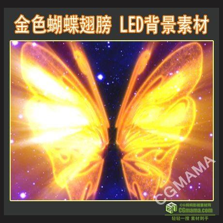 LED0232-金色大翅膀led高清视频背景素材