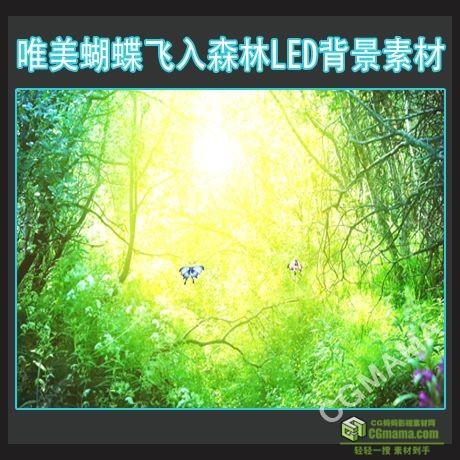 LED0461-蝴蝶飞入森林高清led视频大屏背景素材