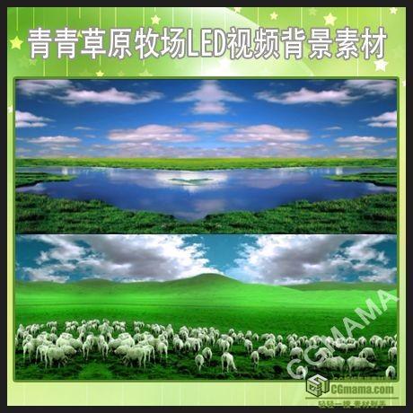 LED0492-草原落叶led视频背景素材