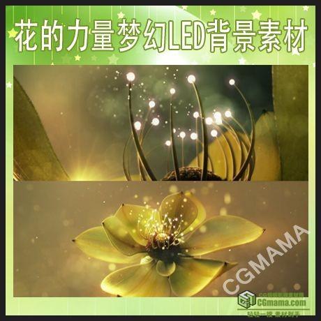 LED0525-鲜花荷花盛开唯美大气led高清实拍视频背景素材
