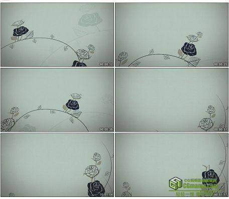LED0613-典雅黑白素色玫瑰生长动画LED高清视频素材
