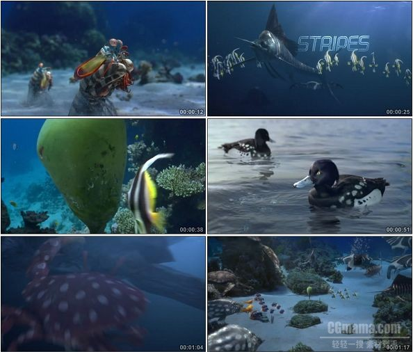 TVC00057-[1080P]吉百利Cadbury Fish 广告Spots v Stripes篇