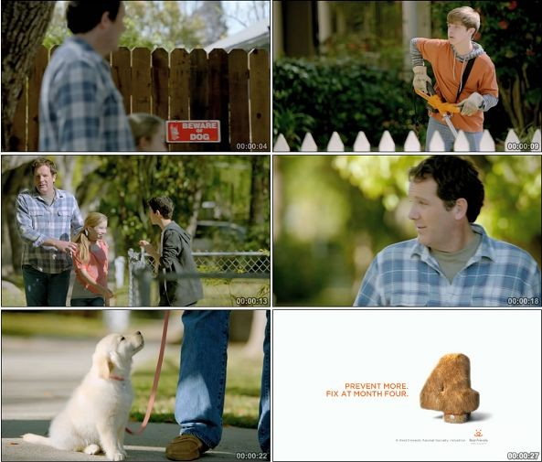TVC00825-Best Friends国外宠物管理机构广告1.1080p