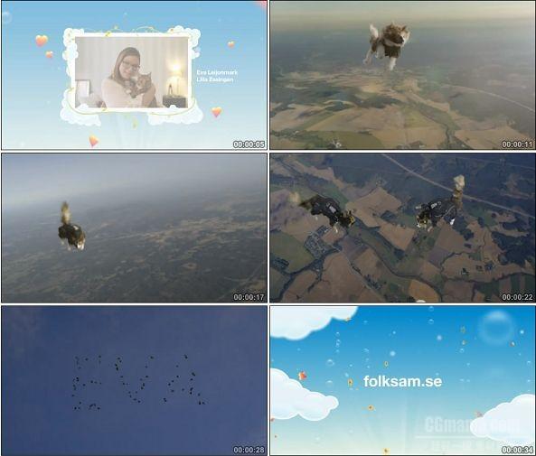 TVC01196-Folksam保险公司- Parachuting Cats.720p