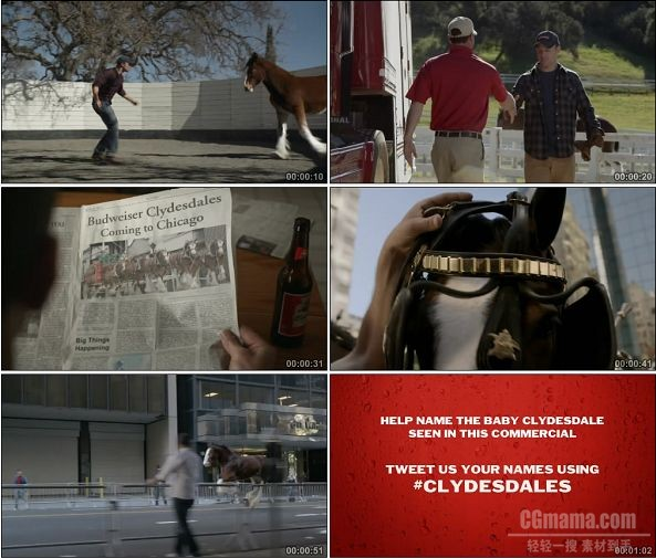TVC01237-Budweiser百威啤酒 Brotherhood.720p