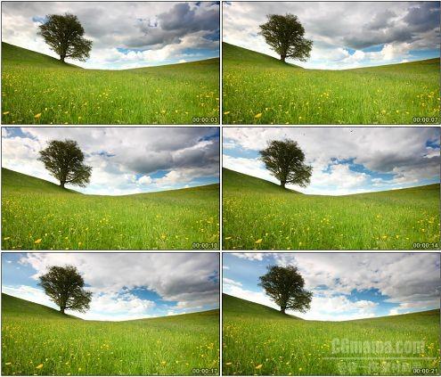 CG0025-高清蓝天白云草地自然风光美景高清实拍视频素材