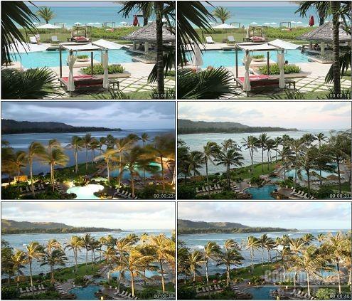 CG0276-椰林树影水清沙白度假胜地高清实拍视频素材