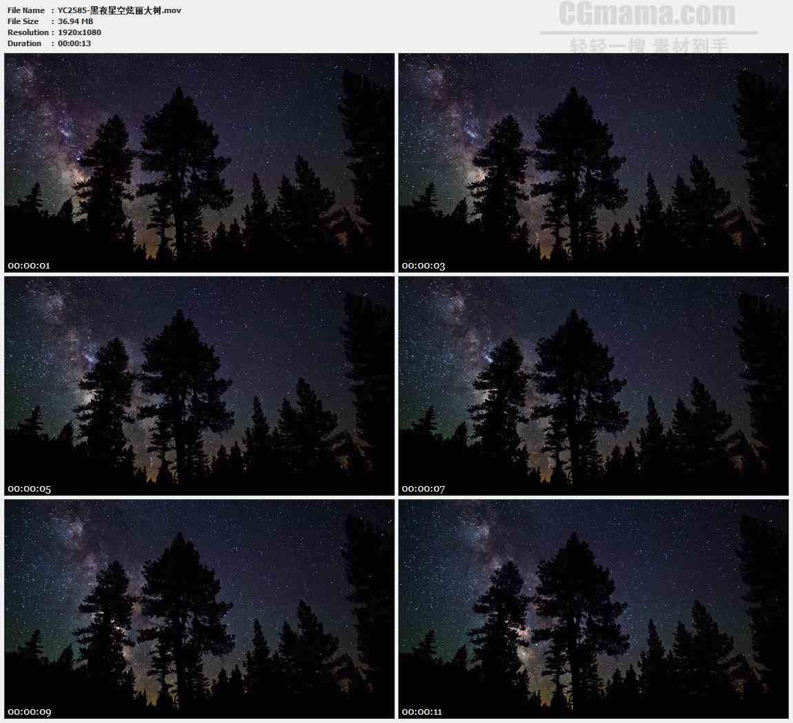 YC2585-黑夜星空炫丽大树高清实拍视频素材