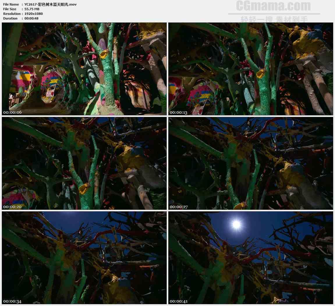 YC2617-彩色树木蓝天阳光高清实拍视频素材