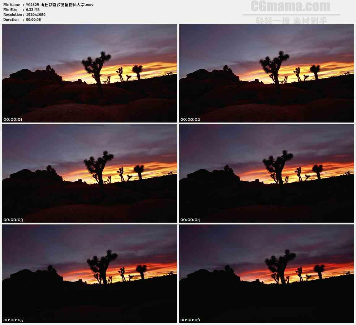 YC2625-山丘彩霞沙漠植物仙人掌高清实拍视频素材