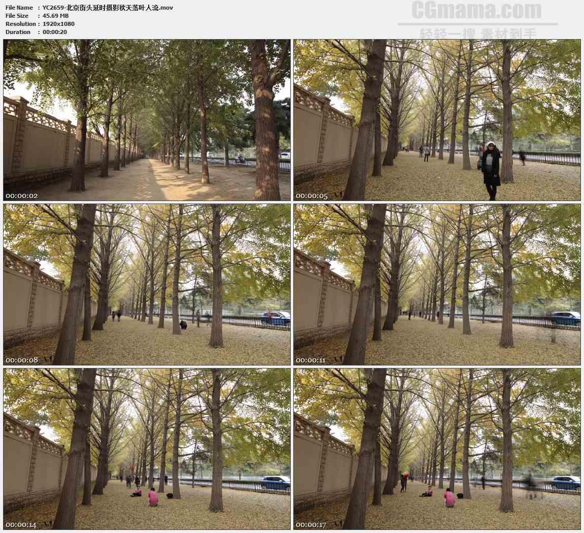 YC2659-北京街头延时摄影秋天落叶人流高清实拍视频素材