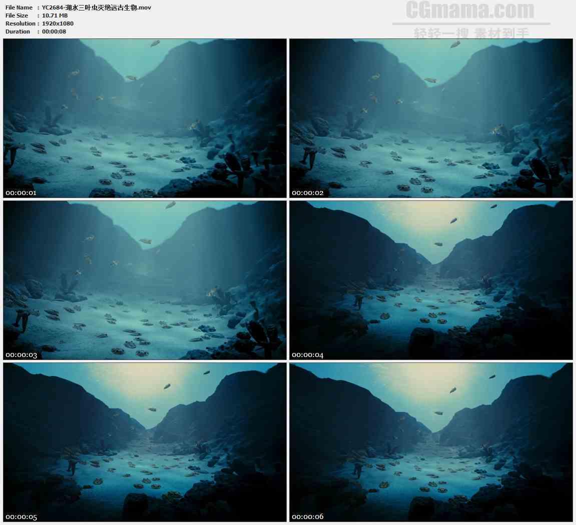 YC2684-湖水三叶虫灭绝远古生物高清实拍视频素材