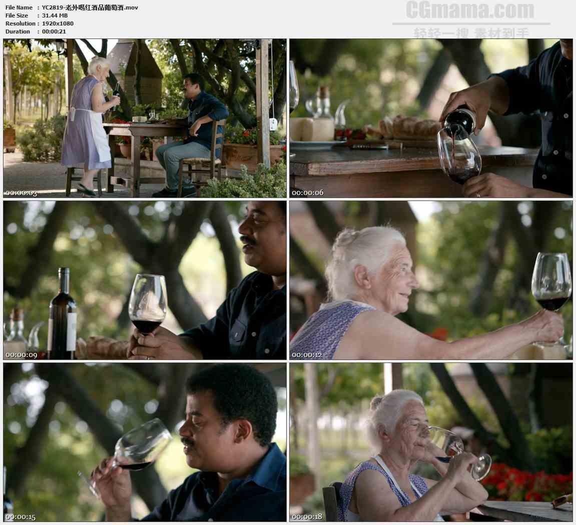 YC2819-老外喝红酒品葡萄酒高清实拍视频素材