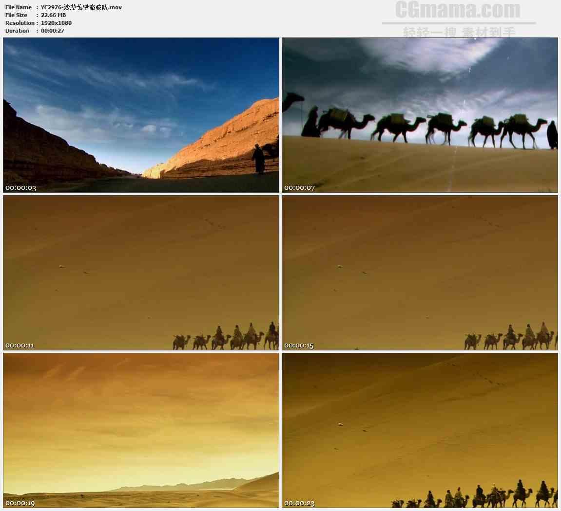 YC2976-沙漠戈壁骆驼队高清实拍视频素材