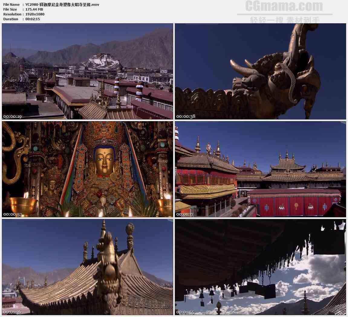 YC2980-释迦摩尼金身塑像大昭寺圣殿高清实拍视频素材