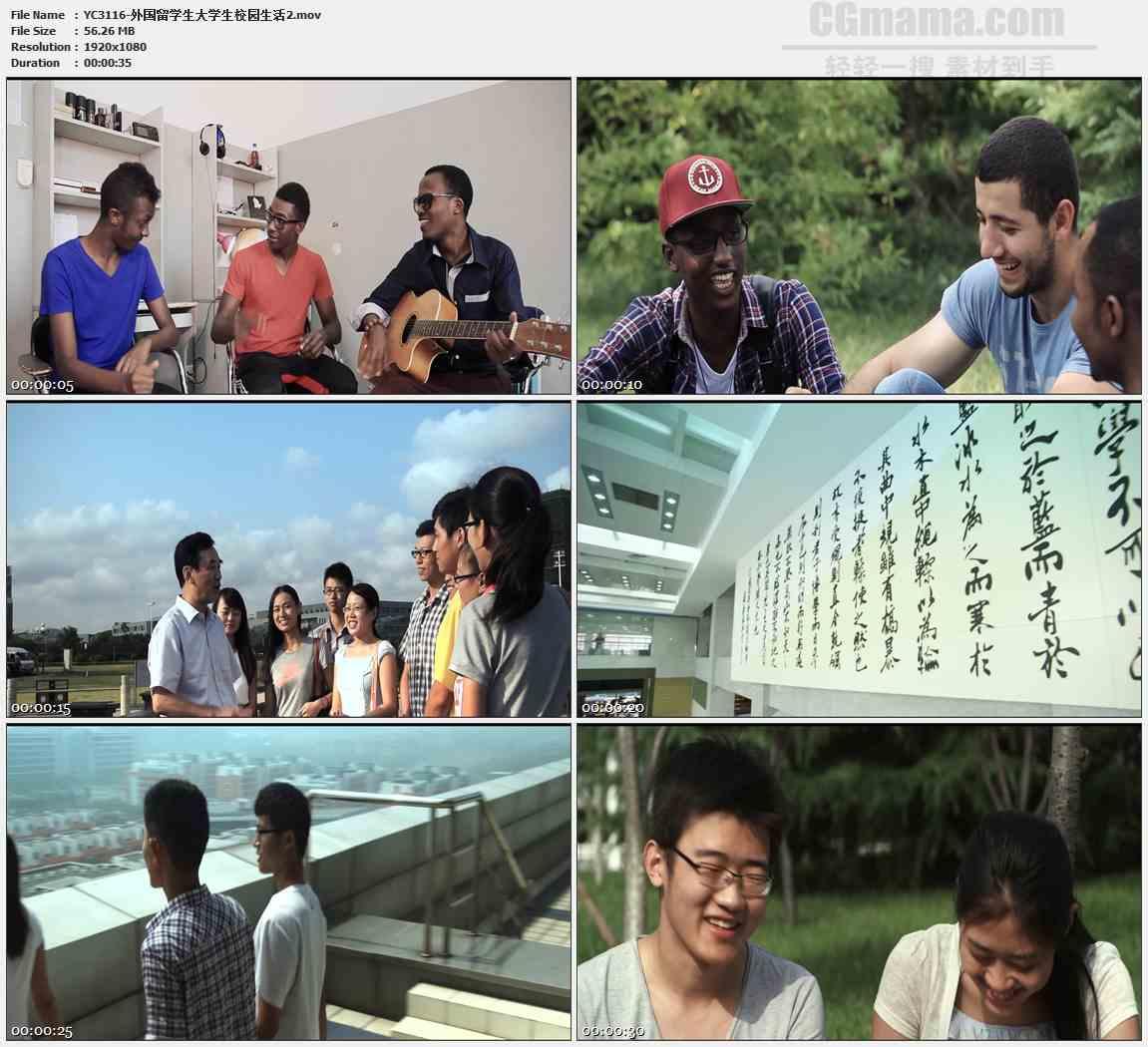 yc3116-外国留学生大学生校园生活高清实拍视频素材