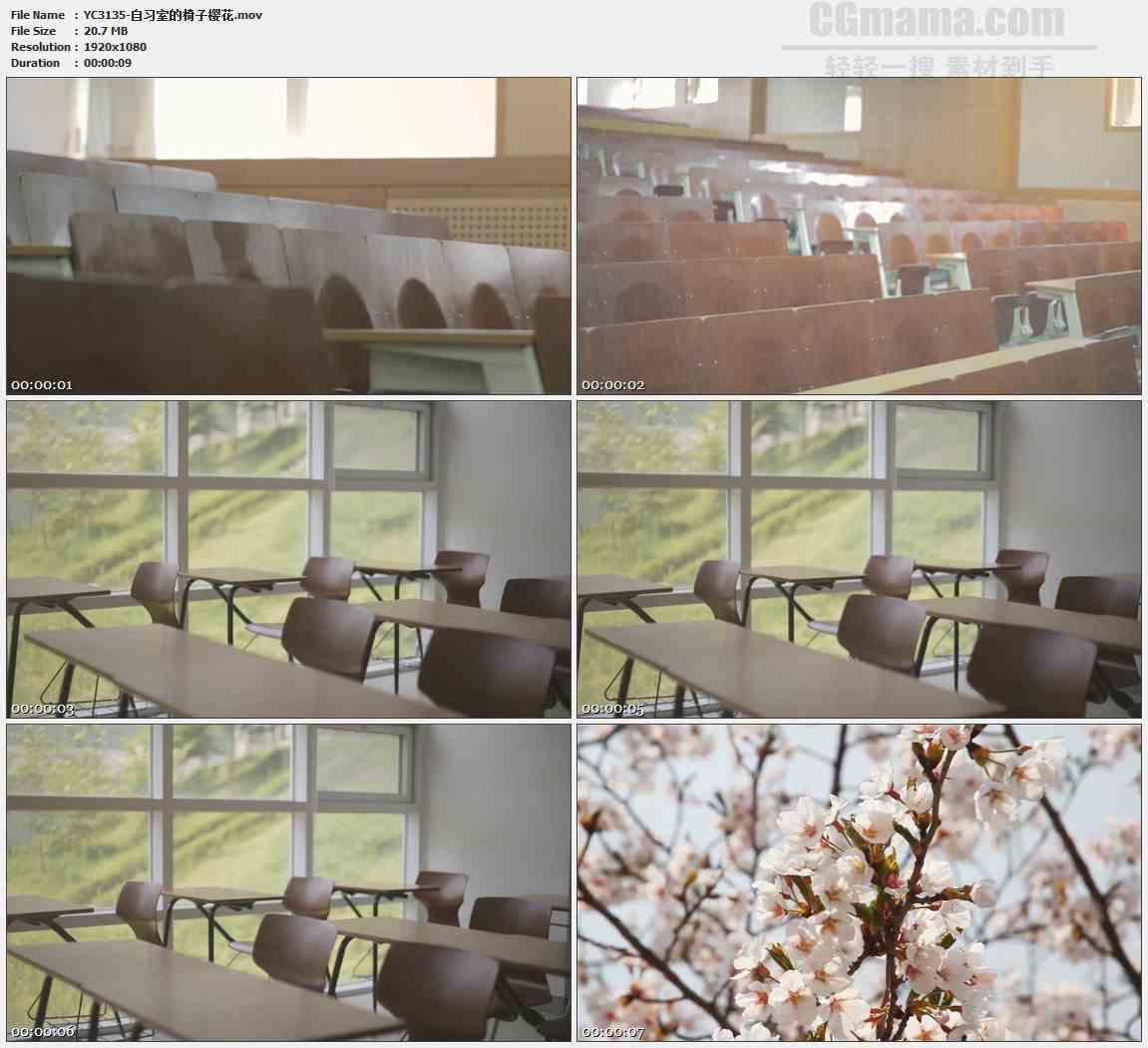 YC3135-自习室的椅子樱花高清实拍视频素材