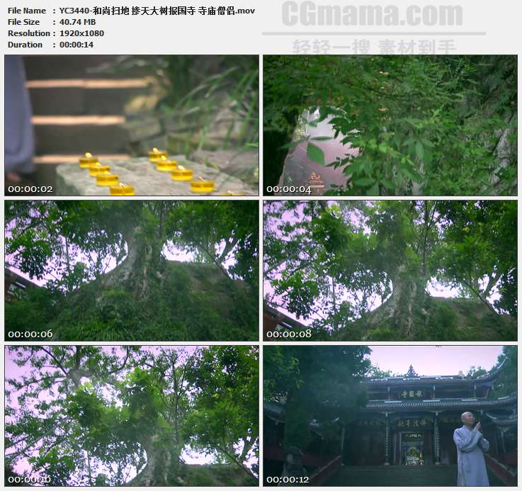 YC3440-和尚扫地 掺天大树报国寺 寺庙僧侣高清实拍视频素材