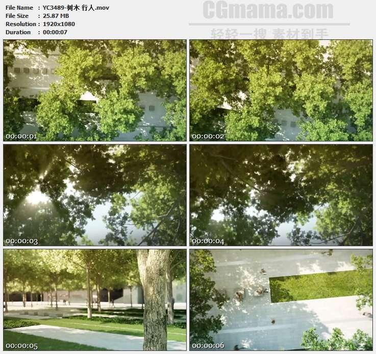 YC3489-树木 行人高清实拍视频素材