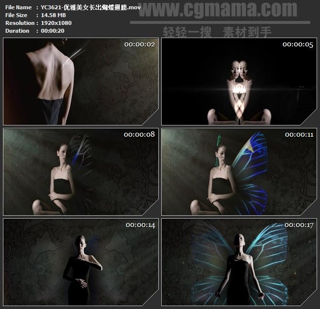 YC3621-优雅美女长出蝴蝶翅膀高清实拍视频素材
