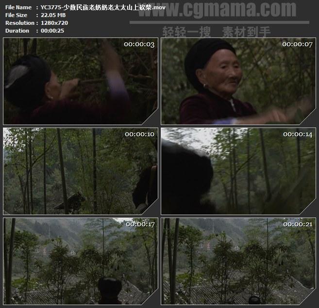 YC3775-少数民族老奶奶老太太山上砍柴高清实拍视频素材