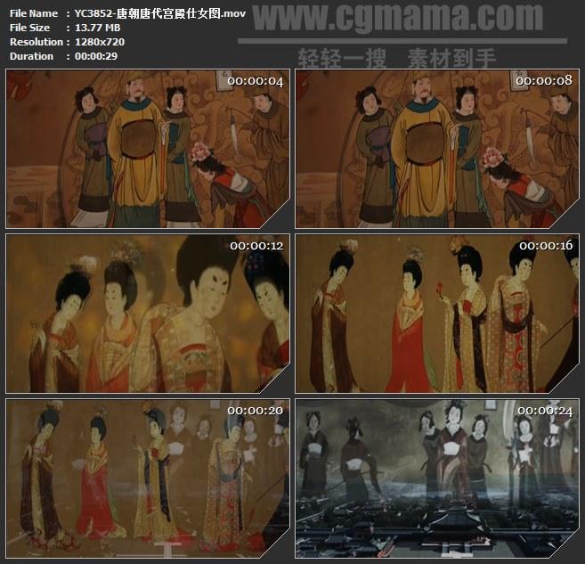 YC3852-唐朝唐代宫殿仕女图高清实拍视频素材