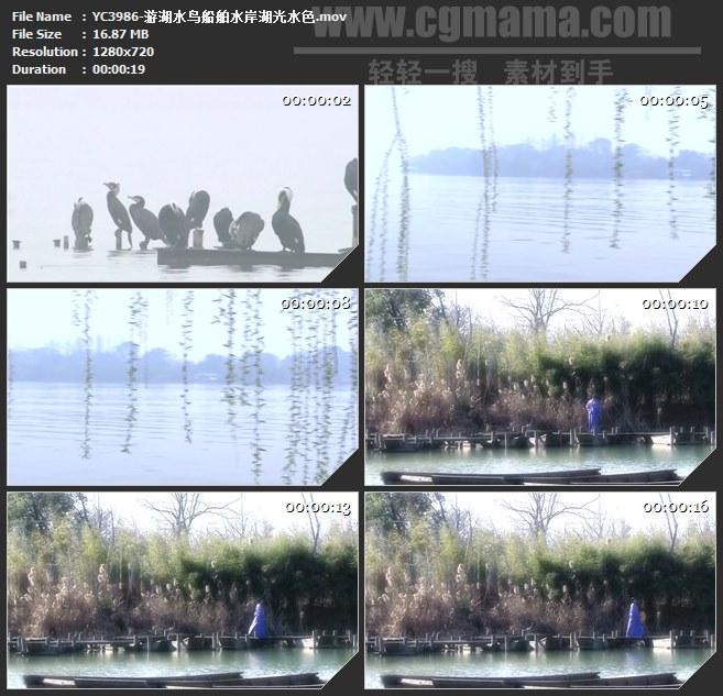 YC3986-游湖水鸟船舶水岸湖光水色高清实拍视频素材