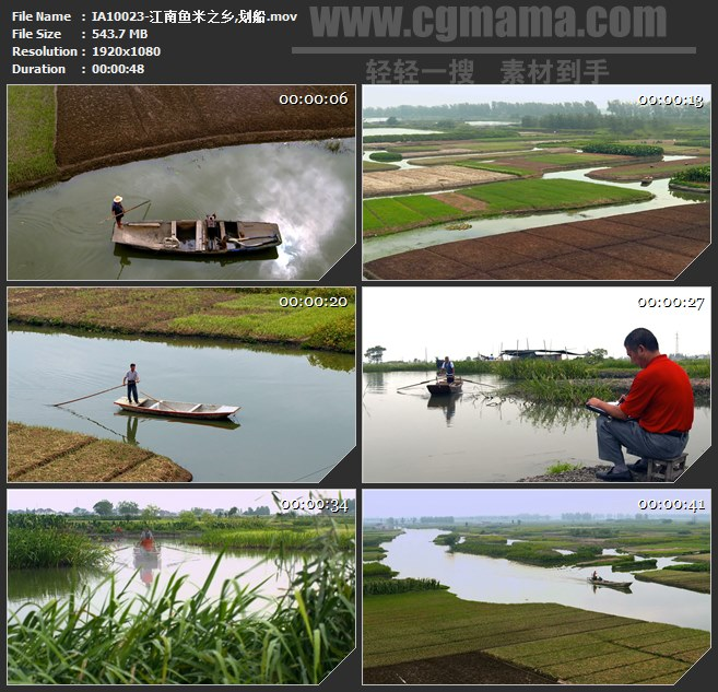IA10023-江南鱼米之乡划船水田芦苇水稻高清实拍视频素材