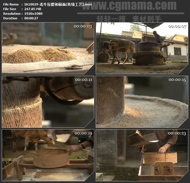 IA10029-老牛拉磨筛面石碾传统工艺高清实拍视频素材