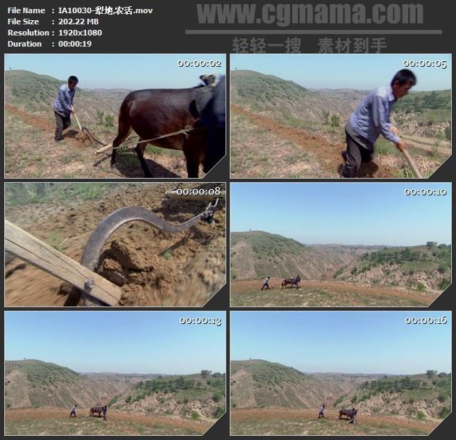 IA10030-毛驴锄头犁地农活耕种开垦高清实拍视频素材