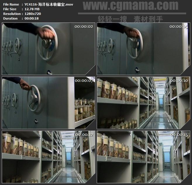 YC4116-海洋标本收藏室高清实拍视频素材